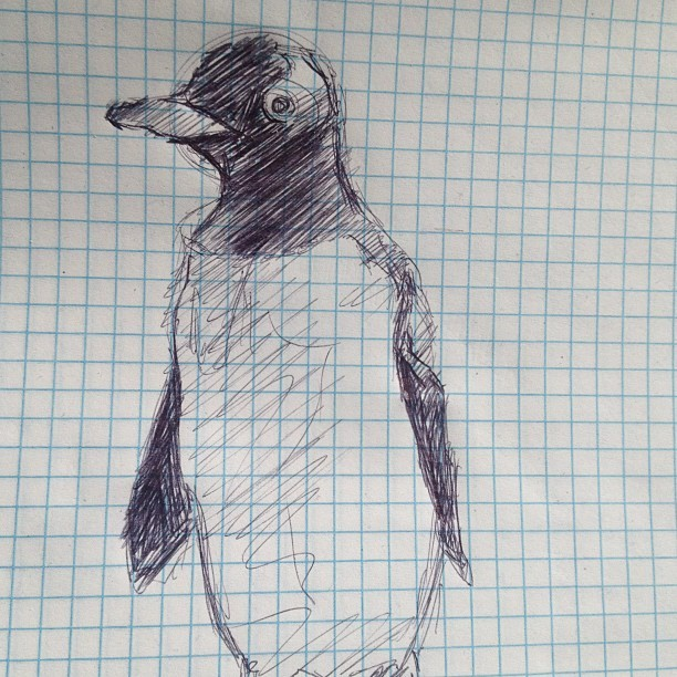 Penguin sketch on free sheets of paper