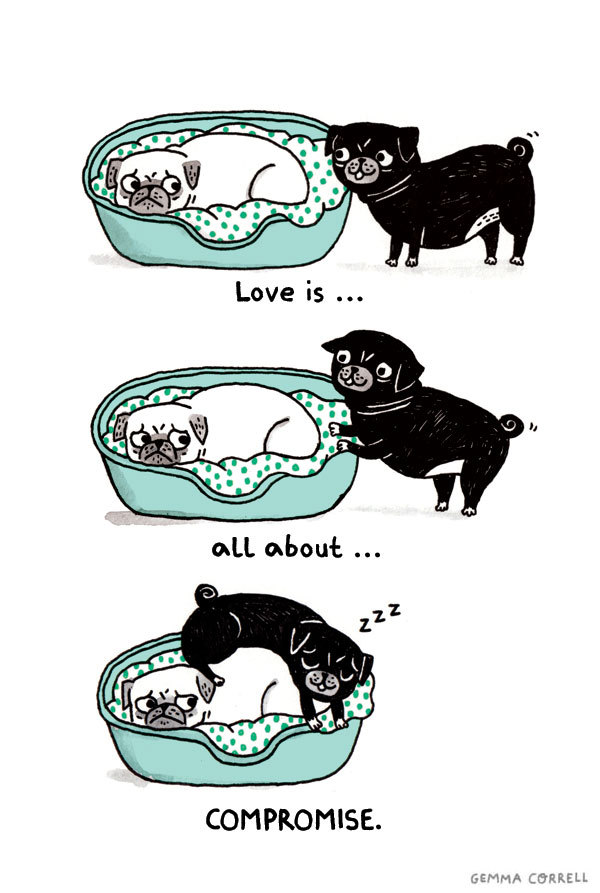 the-absolute-funniest-posts:  thefrogman: A Pug's Guide to Love by Gemma Correll [website | tumblr]   My lovely followers, please follow this blog immediately!