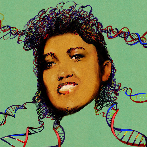 "genannetics:  The Immortal Life of Henrietta Lacks, the Sequel  Rebecca Skloot, author of the extremely popular non-fiction novel ""The Immortal Life of Henrietta Lacks,"" once again raises important moral and ethical dilemmas behind the ubiquitous HeLa cells, this time surrounding the recent publication of the HeLa cell genome.  LAST week, scientists sequenced the genome of cells taken without consent from a woman named Henrietta Lacks. She was a black tobacco farmer and mother of five, and though she died in 1951, her cells, code-named HeLa, live on. They were used to help develop our most important vaccines and cancer medications, in vitro fertilization, gene mapping, cloning. Now they may finally help create laws to protect her family's privacy — and yours.  Now, HeLa cells cells have been back in the news, when researchers published the HeLa cell genome, seemingly without consent from the Lacks family.  This raises new questions surrounding genetic information and privacy.  How much can we learn from a raw human genome?  What are the major ethical issues behind using genetic material in research, and what does it mean to give consent? I highly recommend Rebecca Skloot's book, as well as this new article.  Issues behind the dissemination of genetic information, and what sort of laws/oversight need to be used to protect individual privacy are quickly becoming increasingly relevant to the research community and the general public."