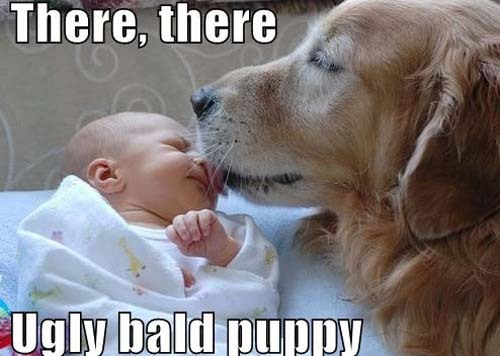 lyssababyxoxo:  hahahaha this made me think of peep and baby carter.