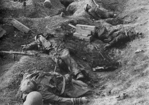 railways-and-roses:  Fallen members of a mixed Hitlerjugend/Volkssturm unit in their trenches. Seelow Heights/Germany, April 1945.