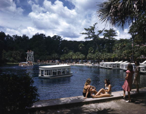 Silver Springs: Ocala, Florida by State Library and Archives of Florida on Flickr.Look at the photo. What has just happened here? What is about to happen? Who has been in this place? Who will come here and and what will they do? What kinds of interactions can you imagine? Write one leaf beginning with what occurs to you upon looking, but do not allow yourself to be limited by what you see.Write One Leaf +about +ask +random +facebook +twitter   sponsors + You Are a Dog [ Kindle | Google | B&N | Kobo | iBookstore ]