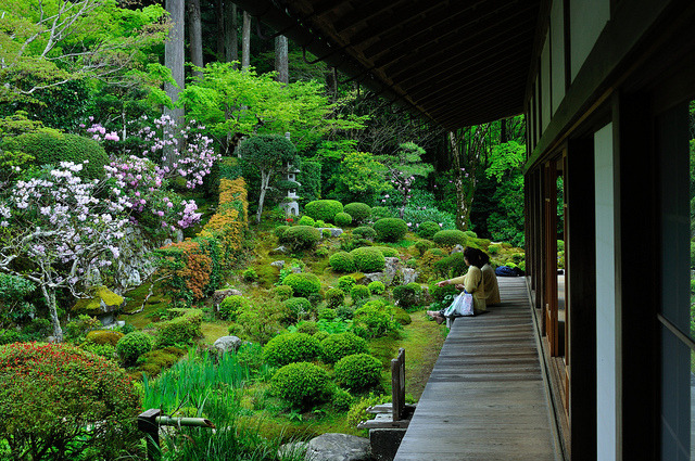 ileftmyheartintokyo:  京都の新緑 三千院/The season of fresh green, Kyoto Sanzen-in by yinlei on Flickr.