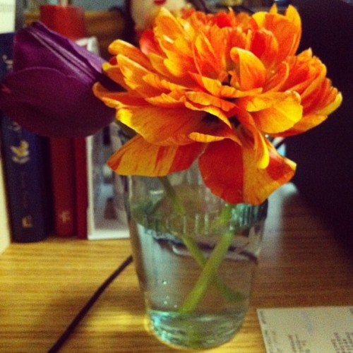 Yeah, I am the girl who picks flowers on campus.