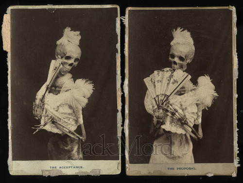 1893 skeleton cabinet cards.. via Jack Mord