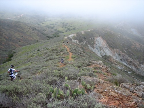 smbiker:  Remembering an exceptionally hard day on my MTB.  Catalina Grand Fondo, the cactus section.