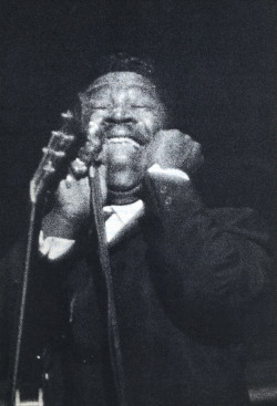 babylonfalling:  B.B. King by Ray Flerlage