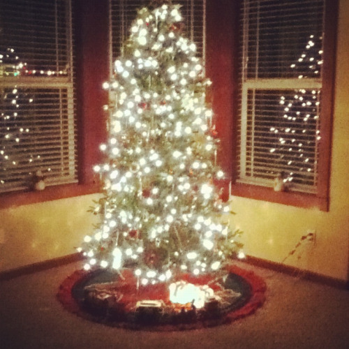 Our Christmas Tree <3