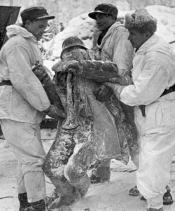 Finnish soldiers lifting the frozen body of a Soviet officer.