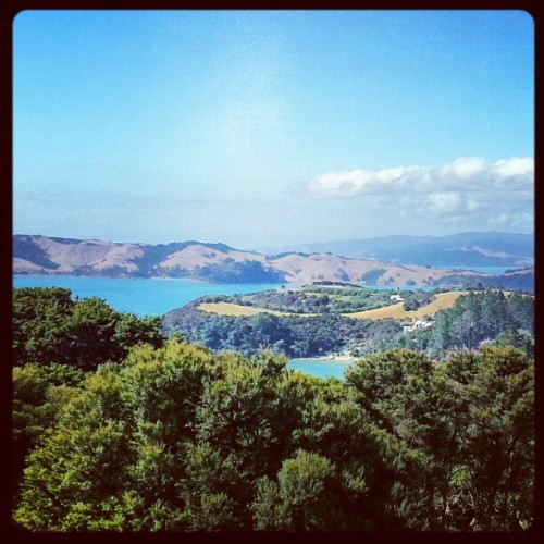 Another beautiful New Zealand view on Waiheke Island / on Instagram http://instagr.am/p/WdgpYwsHPl/