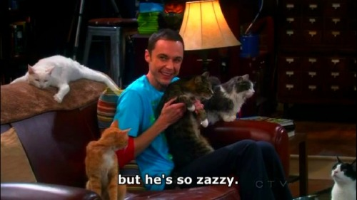 cloud-memory:  Sheldon - But He's So Zazzy.