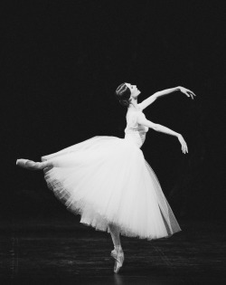 obsessivedancingdisorder:  Svetlana Zakharova (sorry I've been gone for so long! school is killing me)