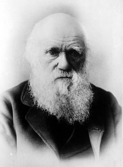 "Happy Birthday to Charles Darwin! On this day in 1809, the English biologist Charles Darwin was born. Darwin transformed science through his voyage on the HMS Beagle and his book ""On the Origin of the Species.""  Darwin developed his theory of evolution based on the process of natural selection. His theory stated that organisms with characteristics more suited for their environment were more likely to survive and pass it on to their fertile offspring. Organisms with unfavorable characteristics would slowly die off.  Keep learning about Darwin and his contributions to science with NOVA. Image: Naturalist Charles Darwin, in an undated photo near the end of his life. (Library of Congress)"