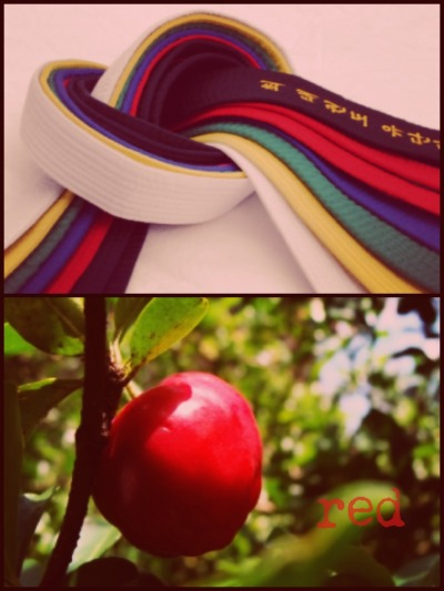 "Meaning of belt colors: red The color red symbolizes the ripe fruit, which is the product of the hard-work done throughout time, and because of it is now ""edible""."