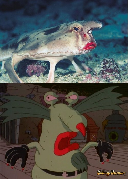 Deep Sea Fish is Actually The Gromble From Ahh! Real Monsters ~*Only Cretaceous Period kids will remember this*~