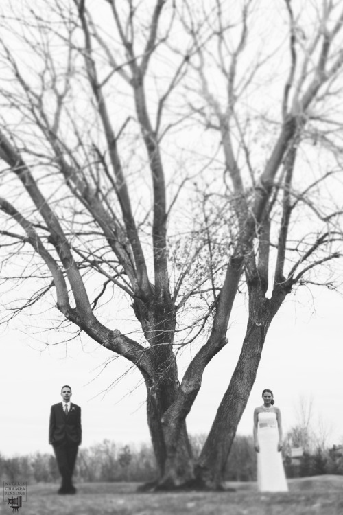 Tree + wedding