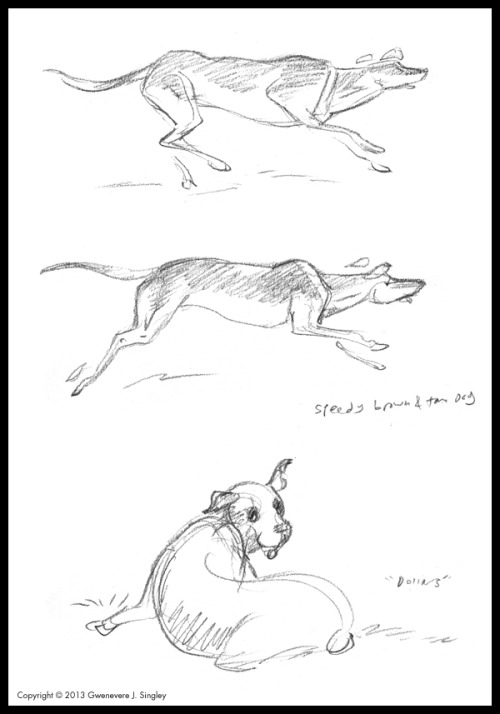 Tis the season to sketch dogs in the park again! So, random doggie sketches! And more doggie sketches are over on my official sketch blog…