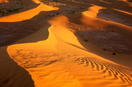 The Sahara's M'Hamid Dunes beckon at sunset.Photo: Meghan Hicks
