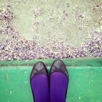 New Tights #purpletights #wisteriapetals #greencurb #fromwhereistand in #pleasanton  (at Pasta's Trattoria)