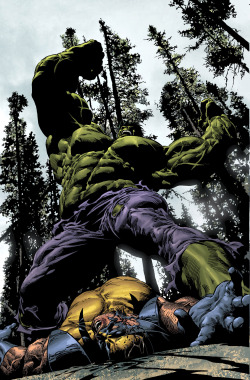 brianmichaelbendis:     The Hulk battles Wolverineby Mike Deodato jr
