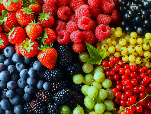 psychedelicfood:  x  Is it berry season yet??