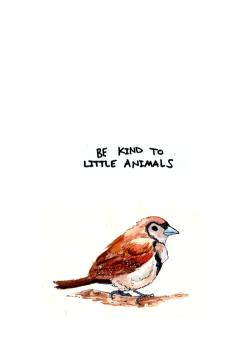 art animals quotes painting Little lyrics nature bird be kind little animals