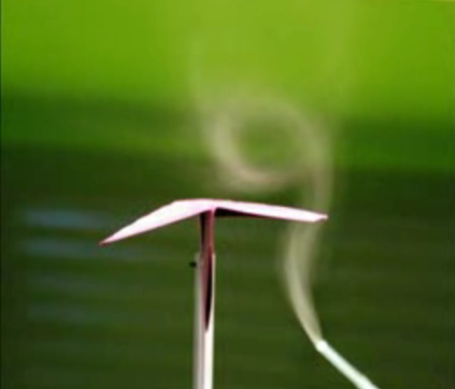 In this still image from a student experiment, smoke visualization shows the formation of a vortex over the wing of a paper airplane during a wind tunnel test. This wing vortex is mirrored on the opposite wing, though there is no smoke to show it. At high angle of attack, the delta-wing shape of the traditional paper air plane creates these vortices on the upper surface, which helps generate the lift necessary to keep the plane aloft. (Photo credit: A. Lindholdt, R. Frausing, C. Rechter, and S. Rytman)