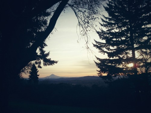 December 3, 2012 | SW Terwilliger Blvd—Portland, OR