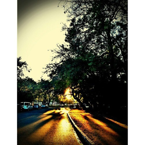 winter is coming #PortoAlegre 8h am 8ºC :( #goodmorning #urban #street #sunrise  (at Parque Farroupilha (Redenção))