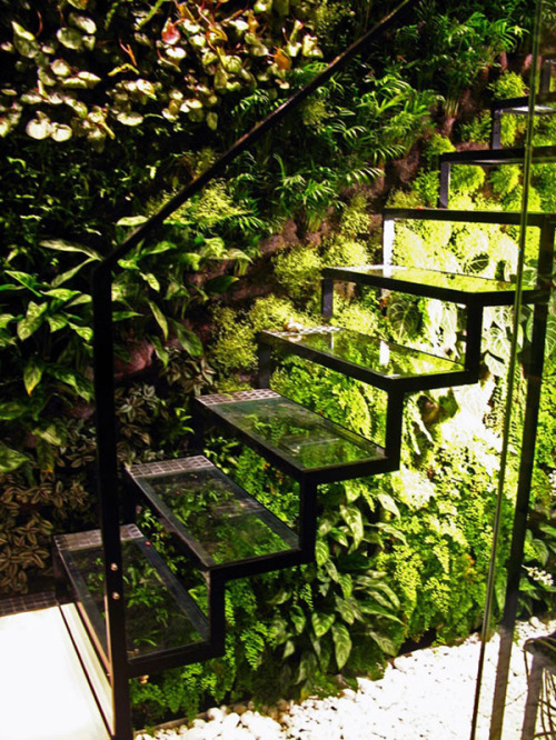 life1nmotion:  A glass staircase and living wall in Patrick Veillet's Paris studio. Designed by Vertical Garden's Patrick Blanc
