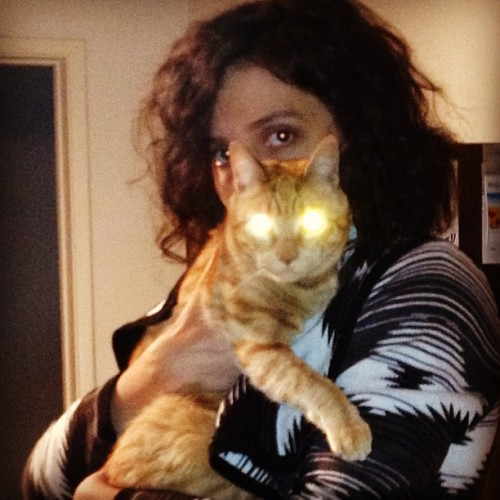 Cat eye-lasers (at Casa Quintree)