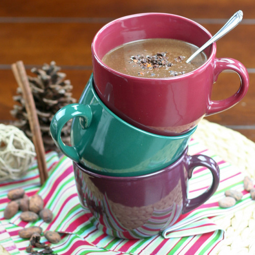 Hot Cocoa Smoothie by Sonia! The Healthy Foodie