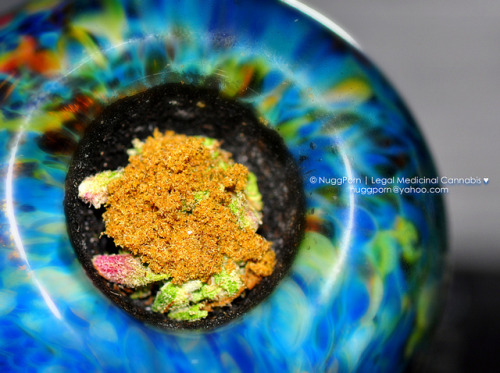 Blueberry Flowers | Kush Keif by NuggPorn | Legal Medicinal Cannabis of California on Flickr.