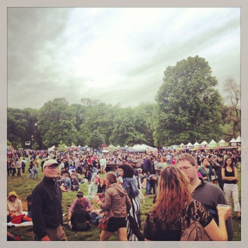 Rainy day two of googamooga