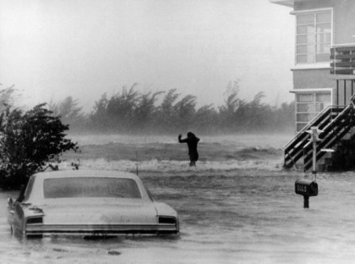 mpdrolet:  Hurricane Betsy, Miami, Florida, August 1965 Florida Memory Division of Library & Services