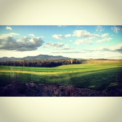 A beautiful view of Moscow Mountain #moscow #idaho #fields #godscountry #palouse #moscowmountain