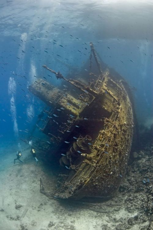 awesome-pictures-awesome:  Shipwreck in the Red Sea  i love pics