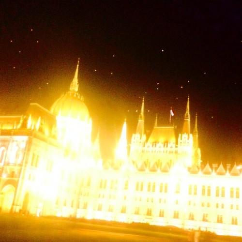 orulunkvincent:paldanielrenyi:Bats over the parliament #parlament #bats #nofilter #budapest (at Hungarian Parliament Building)Szombaton láttam. Nem denevérek, hanem sirályok voltak Nehogy mar, éjjel&#160?