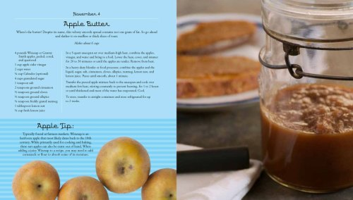 Apple of my eye. This was a blasty blast! 365 pages of apple recipes…seriously 365! Almost 400 pages long, this book had me against the ropes for a bit. But it was totally worth. I have to say. I kind of love this book. Actually, I completely love this book. Keep an eye out this Spring An Apple a Day from Race Point Publishing.
