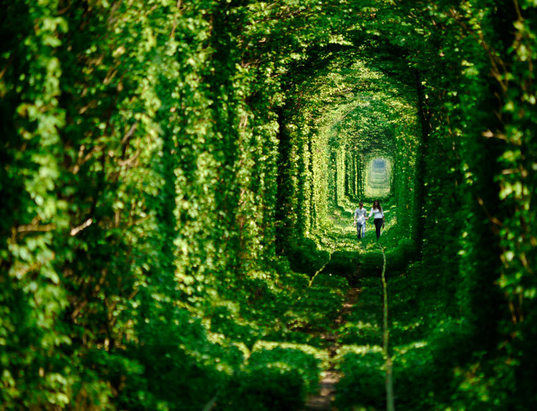 allthingseurope:  Tunnel of Love, Klevan, Ukraine (by The Guardian)  Properly named, brilliantly done.