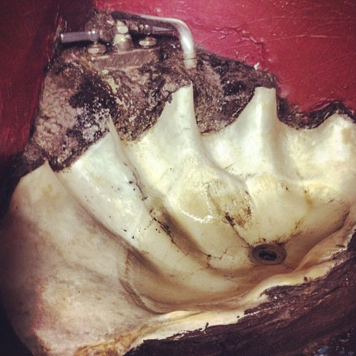 Is it a shell or is it a sink? Both. (at Kennedy's Irish Pub & Indian Curry House)