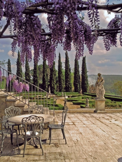 Table under Wistera overlooking La Selva Vacation Villas, Siena, province of Siena