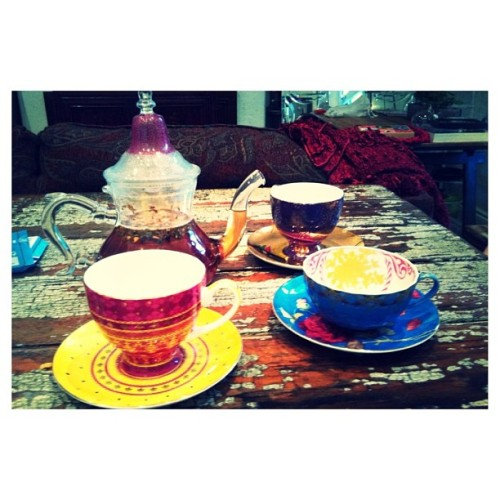 floricawild:  havin a tea party!