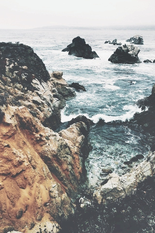 love photography hipster vintage boho indie nature ocean
