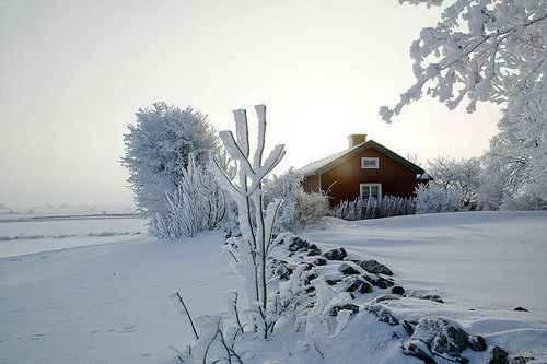 transylvanialand:  Winter mood by texturedJohn on Flickr.