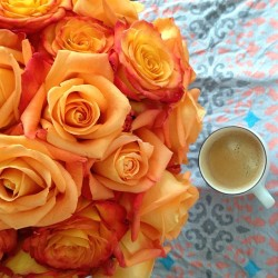 #goodmorning #coffeetime #coffee #espresso #roses #flower #flowers #flowerpop #flowerporn #flowerarrangement #flowerfriday #needsaniron @hammockshightea