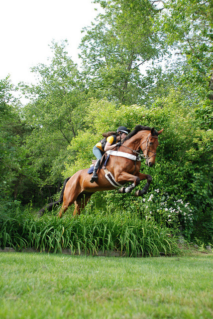 horsesornothing:  Kristine and Frankie Eventing by Citizen Horse on Flickr.