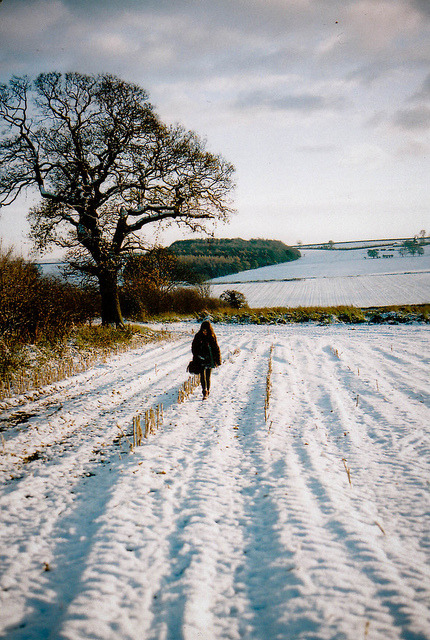 ysvoice:  | ♕ |  winter fields - Leeds, England  | by © emilyharriet