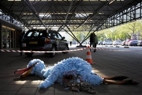 BREAKING: Big Bird (Pino) dies in Hospital Amsterdam after car accident