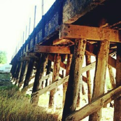 archlovesca:  Burned Bridge… Still structurally sound. #bridge #exploring #paths #trail #burnt #burned #fire